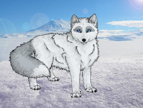Arctic Fox :AT: by wanton-fox