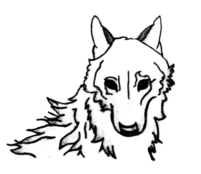 Black and White Wolf by Hannah29K9