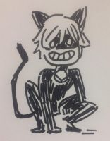 Chat Noir Sharpie Sketch 2-17-17 by Sirenas-cove