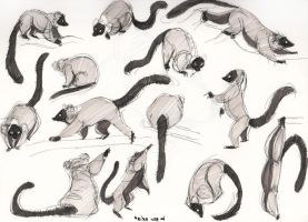 Lemur Life Drawings 2 by IllegalOrangeJuice