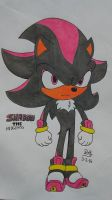 Shadow The Hedgehog by PilloTheStar