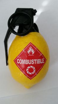 Portal 2 Combustible Lemon by ronime