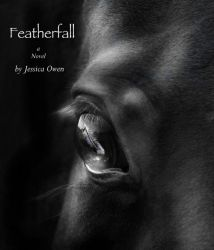 Featherfall by ElementalJess