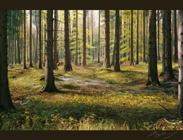 Forest Study #1 by Dropdeadcoheed