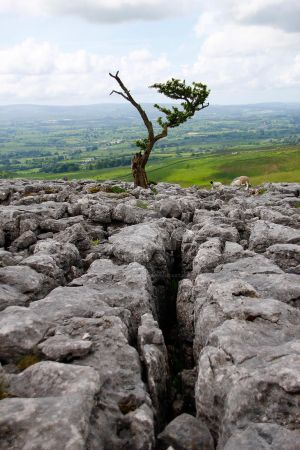 On the edge at Twistleton Scar - Yorkshire Dales. by GaryTaffinder
