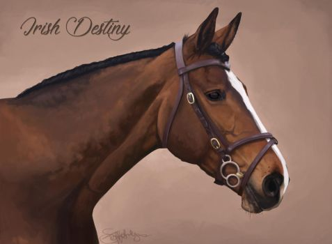 Irish Destiny by ImagineKami