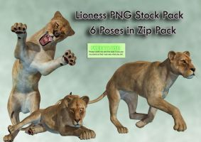 Lioness PNG Stock Pack by Roy3D