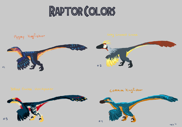 Raptor Colors copy by chill13