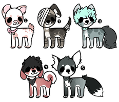 open adopt batch by spookydoge