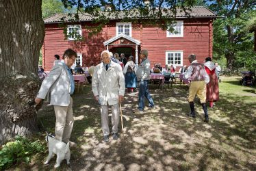 Swedish National Day 2 by sandas04
