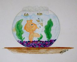 Fishbowl by Dhria