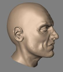 Face sculpt by kordal