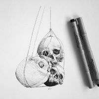 Day5: Skull Study by AJdorable