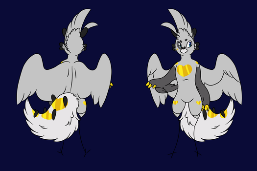 .:Seagull Reference Sheet:. by Gay-Seagulls