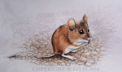 Native Field Mouse by Lil-el-art