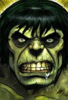 Incredible Hulk by Spears by markman777