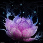Pink Lotus by Romantar