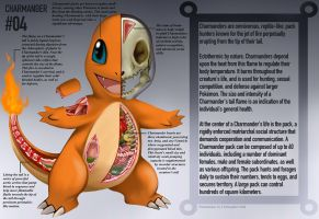 Charmander Anatomy- Pokedex Entry by Christopher-Stoll