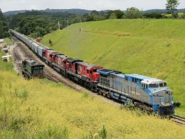 Rumo AC44i 9829 leading empty train by Alexandre-ue