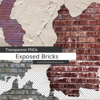 Exposed Brick PNGs by redheadstock