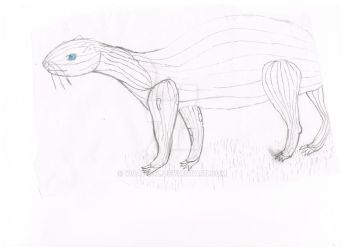Squash Animal - 2011 High School Doodle - by Wcatgal