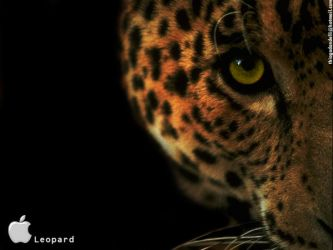 Mac OS X Leopard Wallpaper by Dondelli
