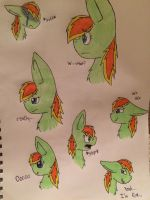 ShootingStar expressions by blurryfeather