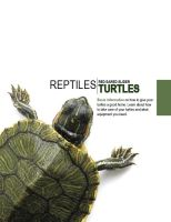 Turtle Catalog Cover by GrizzlyArt27