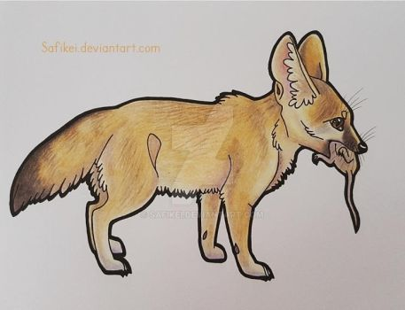 Little fennec and her meal by Safikei