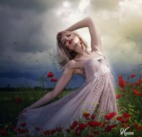 Between poppies by Eithen