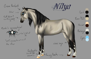 Nitya Reference by FireSkip