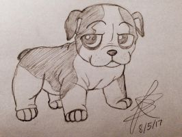 Dog Sketch by Infinity-Drawings