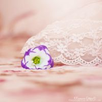 Softness by FrancescaDelfino