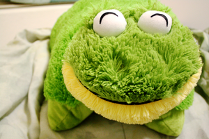 Frog PillowPet! by sealida