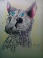 Trico by Toothyna