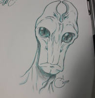 Salarian Sketch by Tinalbion