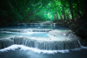 Tropical Rain Forest by HZ-Designs