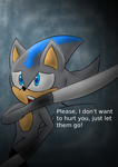 Request: Storm the Hedgehog by Soshadilver