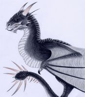 The Hungarian Horntail by verreaux