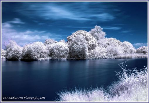 REAL HDR Infrared Shot by Rovanite