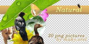 PNG STOCK SET: Natural by MAKY-OREL