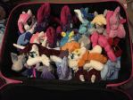 EquestriaLA 2017 con stock packed in suitcase by RubioWolf