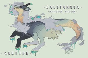 California- Auction *CLOSED* by Sindonic