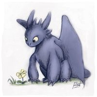 Toothless by AmberDust