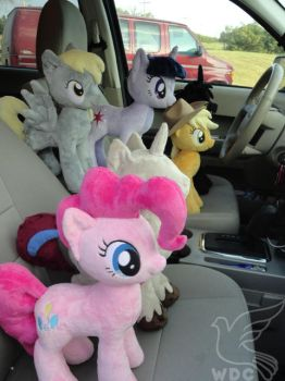 Road Trip by WhiteDove-Creations