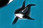 Whalesley swimming with his mom by Dolphingurl21stuff