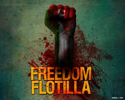 FREEDOM FLOTILLA by venomx