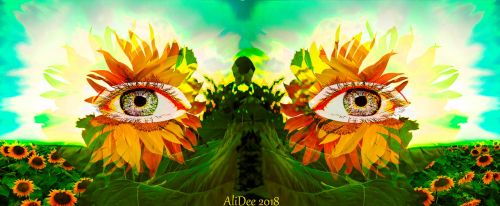 Golden Sunflower Eyes by AliDee33