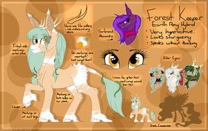 Forest Keeper - Main - Reference Sheet by Forestemni