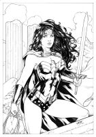 Wonder Woman by Leomatos2014